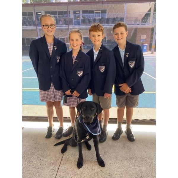 DOG School Captain