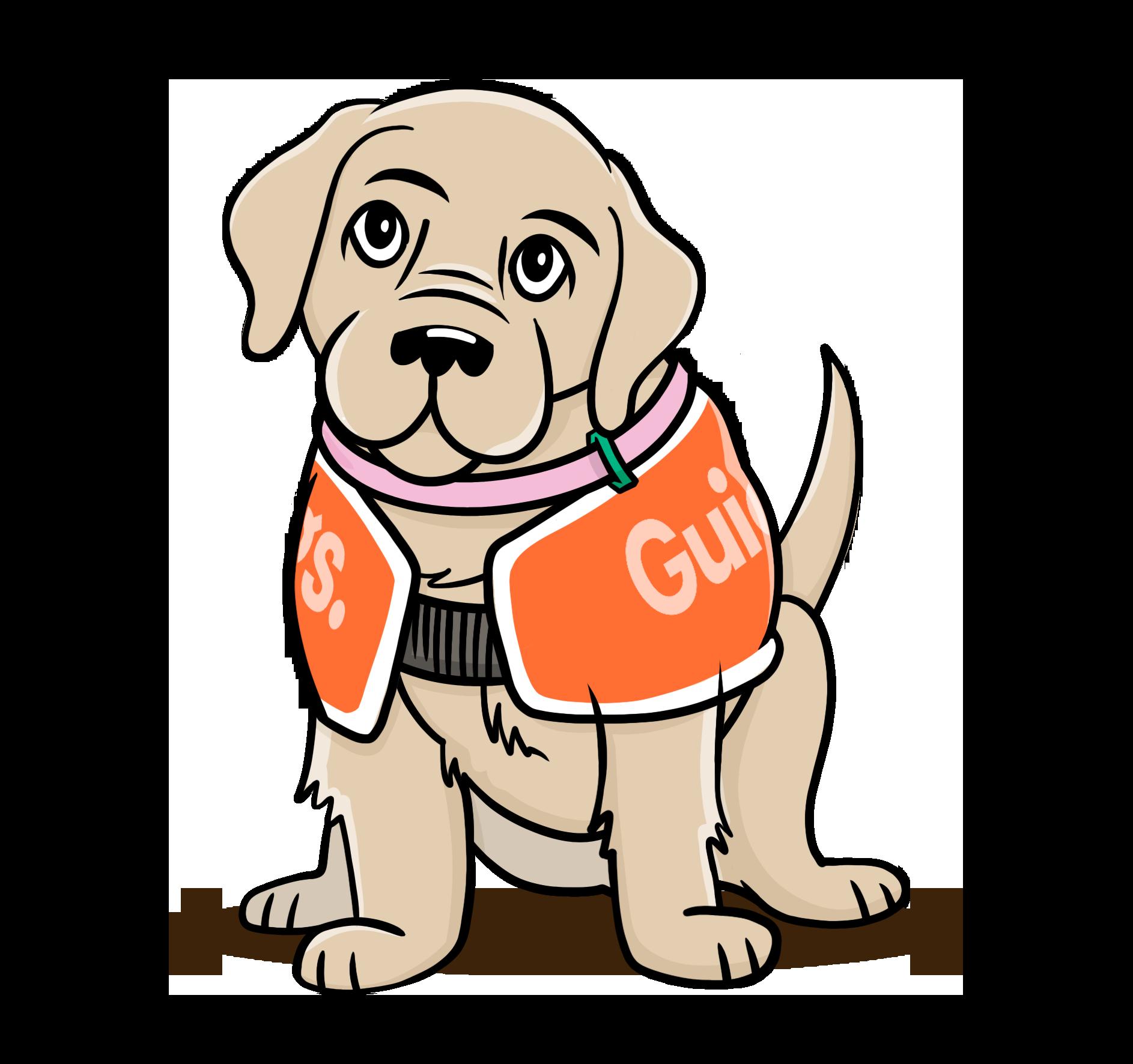 Cartoon drawing of Guide Dog pup wearing orange coat.