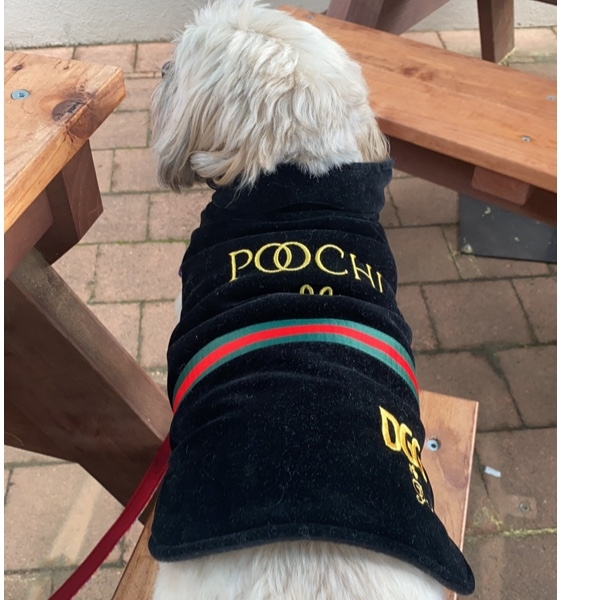 Poochi! It's cold in Canberra, so I have to rug up; might as well do it in style!