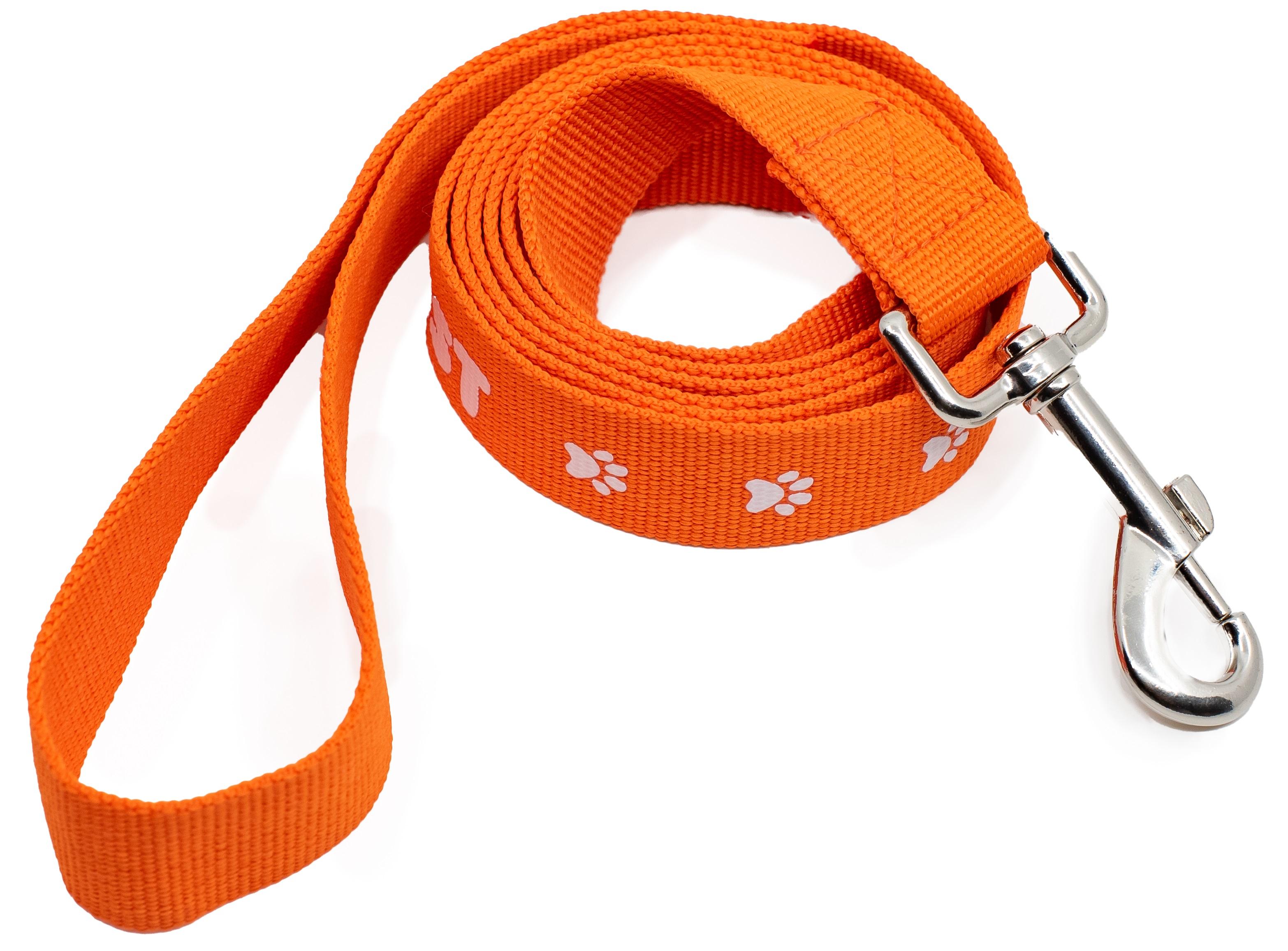 Image of PAWGUST dog lead