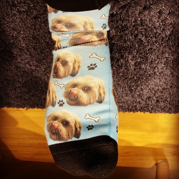 My humans will wear these socks during our walks until we ? earn the orange Pawgust socks!