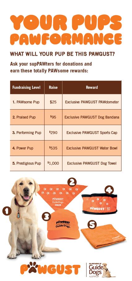 Rewards Flyer